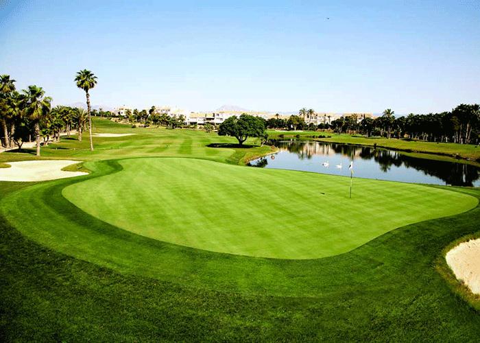 Golfbane, Hotel Alicante